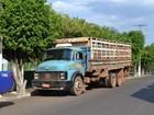 Suspeito de furtar gado de fazenda é preso na região sul do Tocantins
