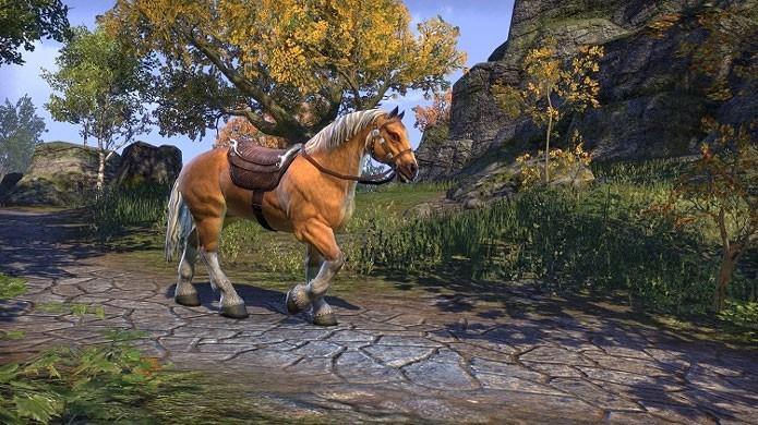 A The Elder Scrolls Online: Gold Edition vem com quatro DLCs e uma montaria (Foto: Divulgação/Bethesda)