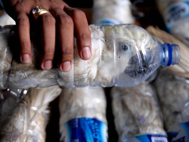 Policial exibe espécime de cacatua que estava sendo contrabandeada entre muitas outras dentro de garrafas pet, no escritório da alfândega do porto de Tanjung Perak, em Surubaya, Indonésia (Foto: Risyal Hidayat/Antara Foto/Reuters)
