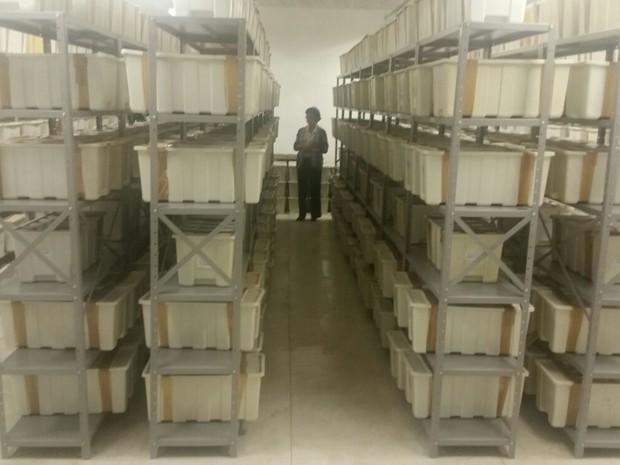 Ao todo, 614 caixascom ossadas  foram trazidas para o MPF de SP (Foto: Tatiana Santiago/G1)
