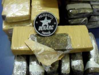 Adolescente disse que receberia R$ 200 para levar a droga a SP (Foto: Denarc / Divulgação)