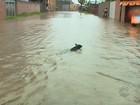 Após melhora no tempo, nível alto de rios deixa Defesa Civil do RS em alerta