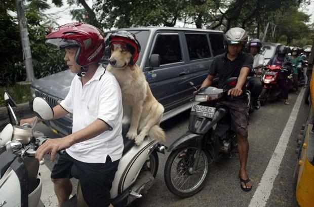 Handoko e Ace enfrentam o trânsito de fim de semana em Surabaya (Foto: Juni Kriswanto/AFP)
