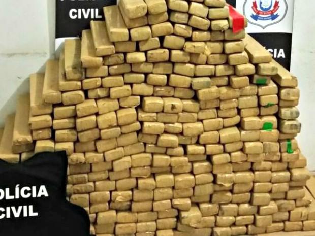 Ao todo, 324 kg de maconha foram apreendidos dentro de carreta (Foto: Divulgação/Polícia Civil de MT)