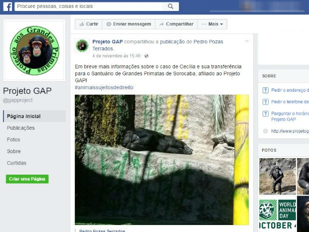 Notícia foi compartilhada no Facebook de santuário de Sorocaba (Foto: Reprodução/Facebook)