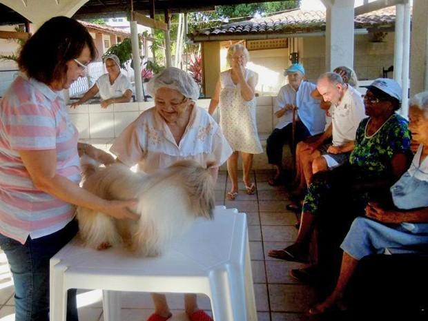 Cães são usados em sessões de zooterapia com idosos (Foto: Arquivo Pessoal/Celene Almeida)