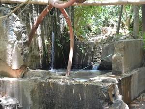 Nascentes no Horto Florestal não abastecem mais a Estação de Tratamento de Água (Foto: Divulgação/Site Prefeitura Barra do Piraí)