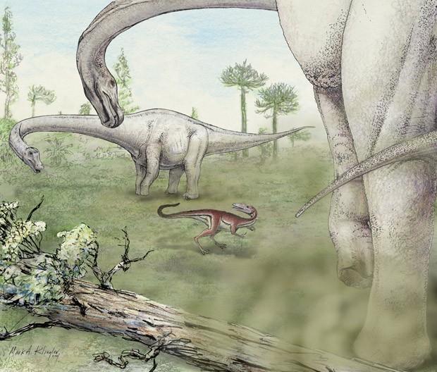 Dinossauro pesava cerca de 65 toneladas (Foto: Mark A. Klingler/Carnegie Museum of Natural History )
