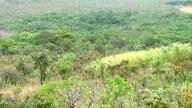 UEG cria unidade de conservação em Anápolis