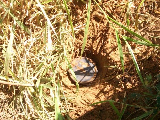Tambor com 310 pinos de cocaína é achado em Santa Bárbara d'Oeste (Foto: Divulgação/Guarda Municipal)