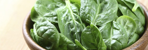 Espinafre: excelente fonte de ferro, clorofila, magnésio, fibra, proteína e vitaminas A, C e E  (Foto: Think Stock)