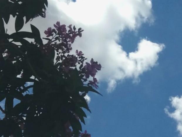 Oito cidade de MS podem registrar temporais hoje e calor predomina amanhã