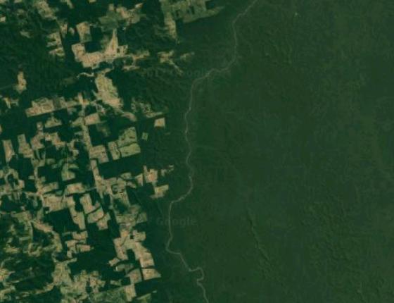 Imagem de satélite mostra os trechos de desmatamento na Floresta Nacional de Jamanxim, em Altamira (Foto: Google Maps)