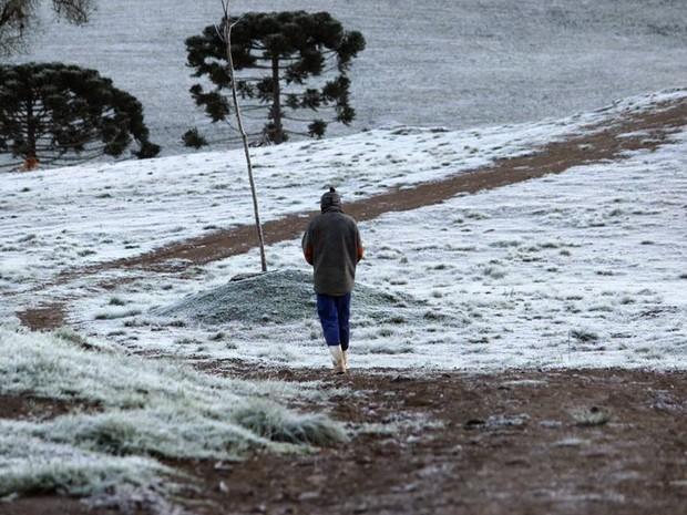 São Cristovão do Sul amanheceu com geada nesta quarta (Foto: Rui Carlos Braun/VC no G1)