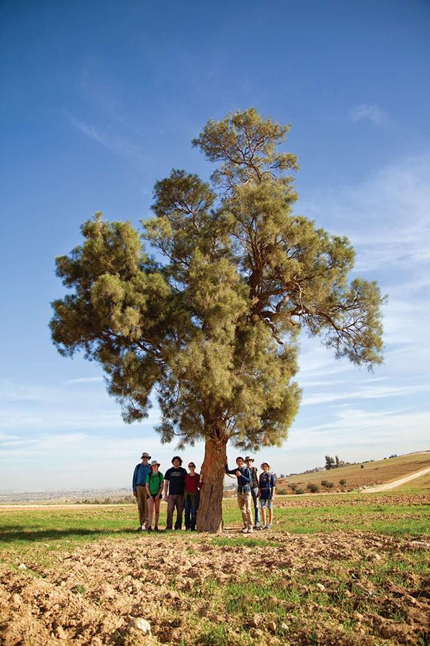 January 2014 — Beersheba to Lakiya (Foto: Divulgação)