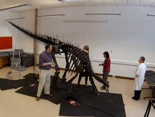 Dinossauros - como será? (Foto: Globo)