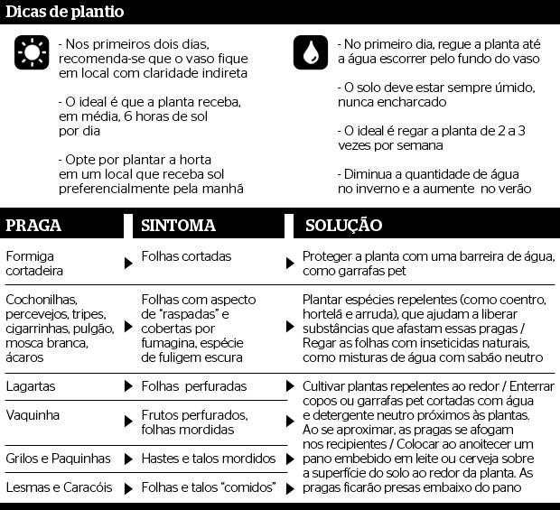 dicas_horta (Foto: Natália Durães / Editora Globo)