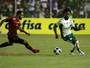 Técnico do Palmeiras projeta testes no sábado e novo rumo na Libertadores