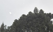 Internautas registram queda de neve ao amanhecer no Sul do país (Divulgação/Elton Policastro/Prefeitura de Bom Jesus)