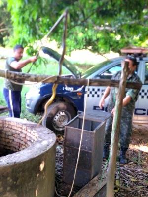 Cobras foram retiradas de po�o pela Pol�cia Ambiental (Foto: Amanda Muller/Arquivo Pessoal)