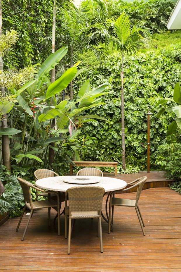 O resultado, alguns meses depois, é um paredão verde com folhagens exuberantes (Foto: Casa e Jardim)