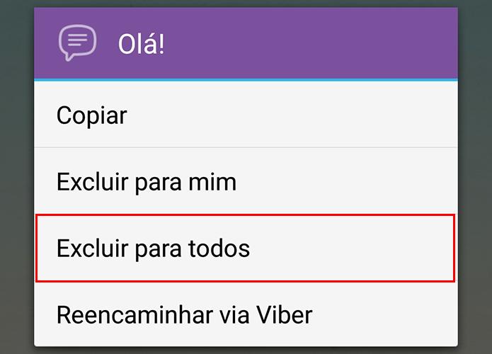 Viber permite excluir mensagens no celular do destinatário (Foto: Reprodução/Paulo Alves)