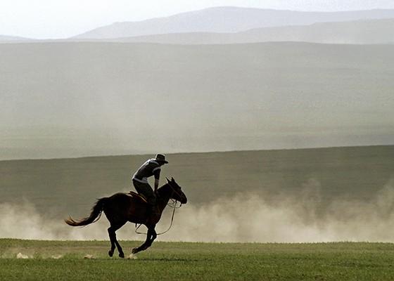 O cavalo é um símbolo importante da cultura mongol  (Foto: © Haroldo Castro/ÉPOCA)