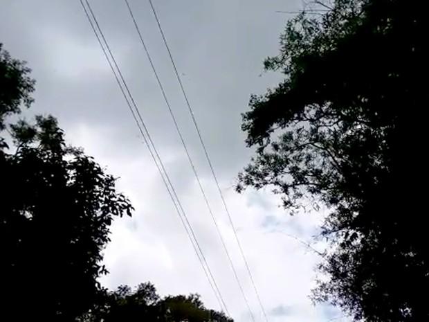Rede elétrica de área rual em Louveira tem oferecido risco a animais, diz morador (Foto: Reprodução / EPTV)