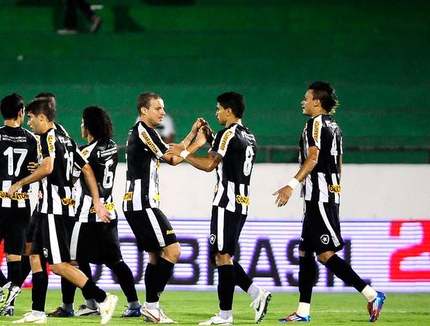 Renato comemora gol do Botafogo contra o Guarani (Foto: Marcos Ribolli / Globoesporte.com)