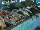 Com o período do defeso, peixes ficam mais caros em Santarém