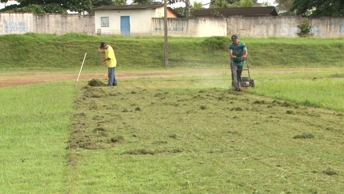 Gramado do Estádio José de Abreu Bianco recebe mutirão de limpeza de pragas (Foto: Samira Lima)