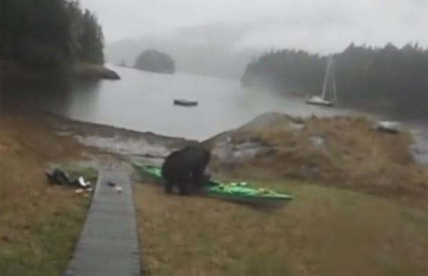 Mary Maley ficou irritada depois que urso atacou seu caiaque  (Foto: Reprodução/YouTube/Mary Maley)