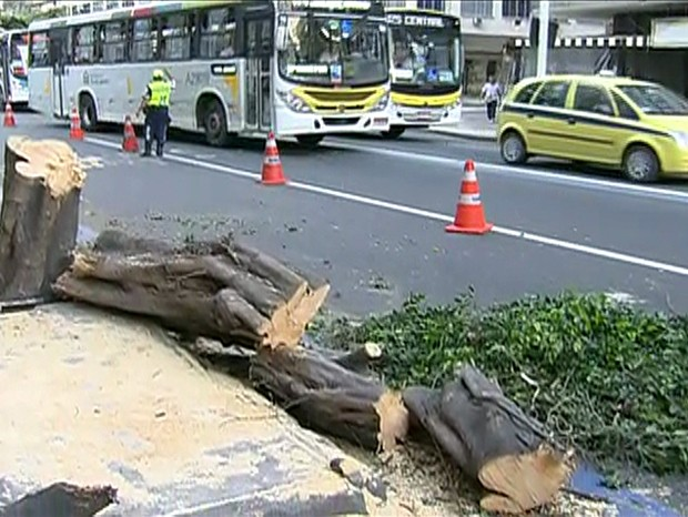 Árvore cai na Avenida Nossa Senhora de Copacabana (Foto: Reprodução / TV Globo)