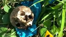 Crânio humano é encontrado em rodovia (Divulgação PRF)