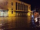 Chuvas derrubam árvore e interditam ruas e avenidas em João Pessoa