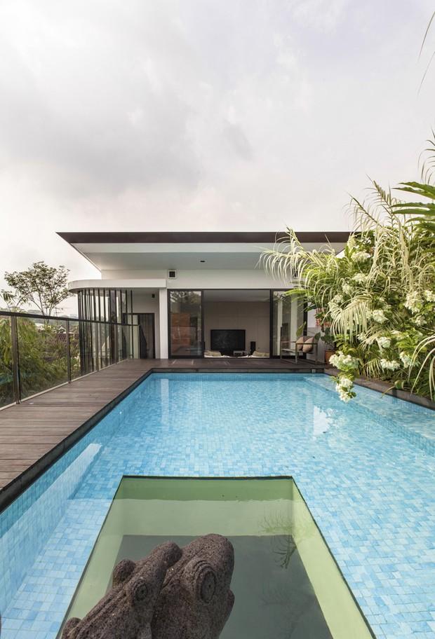 Piscina de vidro veja 8 projetos deslumbrantes casa for House design with garden in the middle