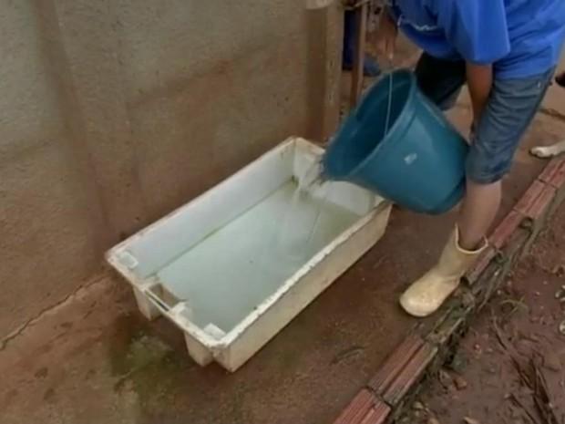 População doa água, ração e medicamentos (Foto: Reprodução/TV TEM)