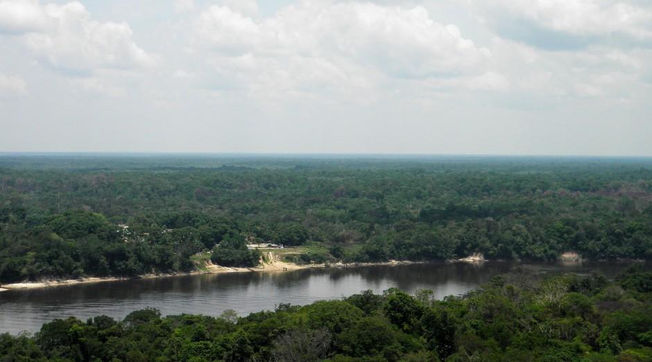 Floresta Amazônica está sendo afetada por mudanças climáticas e ambientais (Foto: Photo Pin)