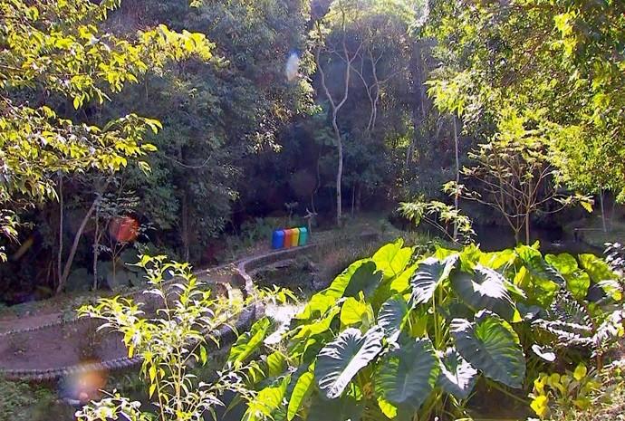 meio ambiente (Foto: Reprodução / TV TEM)