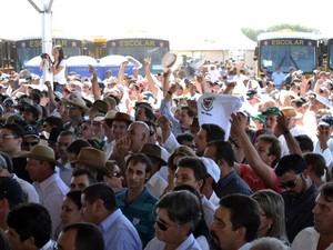 protesto Dilma Mato Grosso do Sul (Foto:  Fernando da Mata/G1 MS)