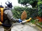 Prefeituras desmentem corrente sobre roubo a agentes da dengue no Vale
