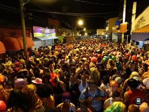 Bloco das Bruacas de Jarinu (Foto: Divulgação/Prefeitura)
