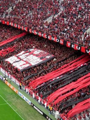 Torcida; Atlético-PR; Arena da Baixada (Foto: Fernando Freire)