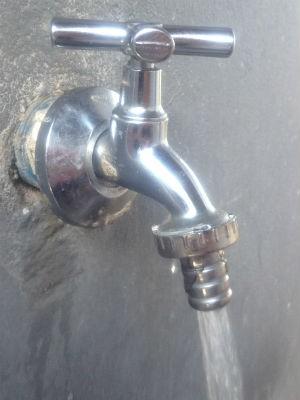 Falta água (Foto: Catiana Calixto/G1 PR)