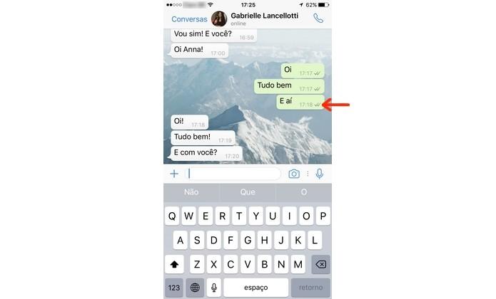 Conversa do WhatsApp com confirmação de leitura desativada no app para iPhone (Foto: Reprodução/Anna Kellen Bull)