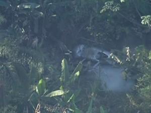 Helicóptero que caiu em Itaquaquecetuba (Foto: Reprodução/TV Globo)