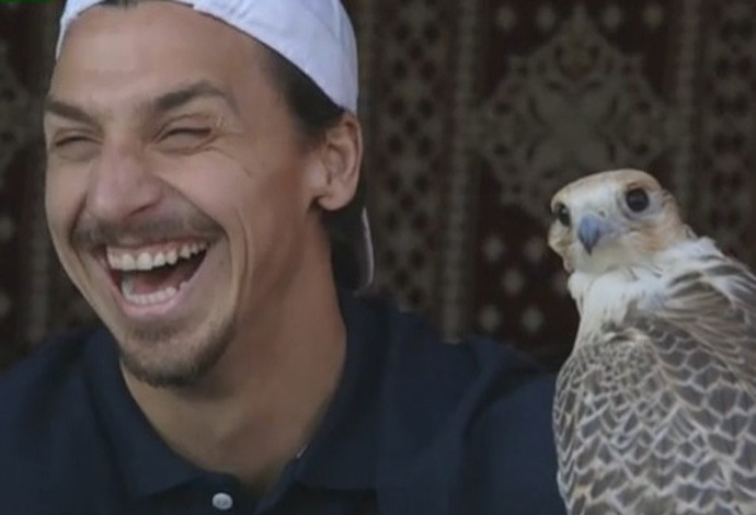Ibrahimovic brinca com falcão no Catar (Foto: Reprodução )
