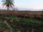Fazendeiro é multado em R$ 65 mil por destruir área de preservação