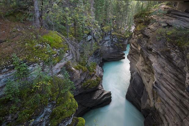 Athabasca Falls, no Canadá (Foto: Lauren Bath/Divulgação)