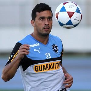 Edílson Treino Botafogo (Foto: Vitor Silva/SS Press)